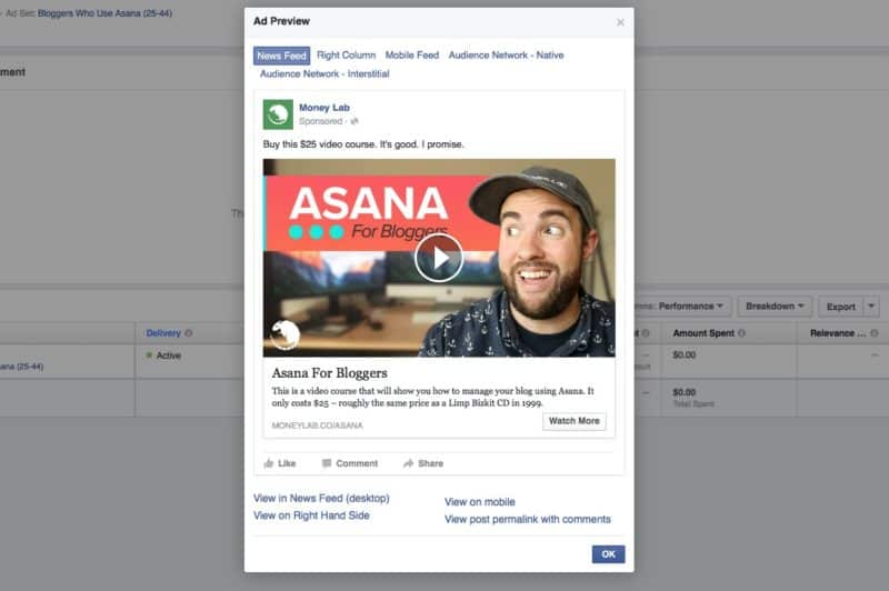 Asana for Bloggers Facebook Video Ad