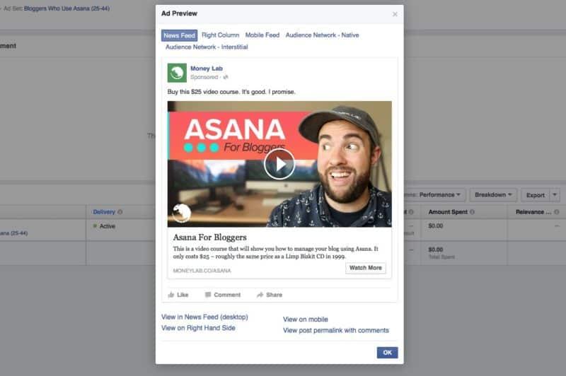 Asana for Bloggers Facebook Video Ad